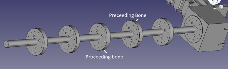 bone5.png